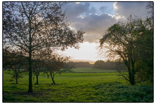 Sunset campagne