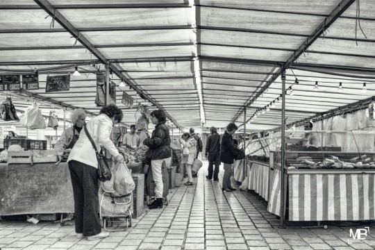 Le marché – Saint Germain-en-Laye (France)
