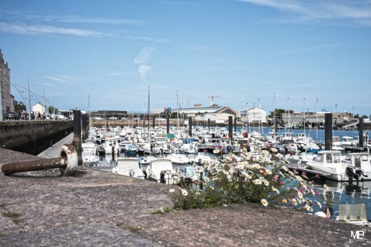 Port de plaisance (Cherbourg)